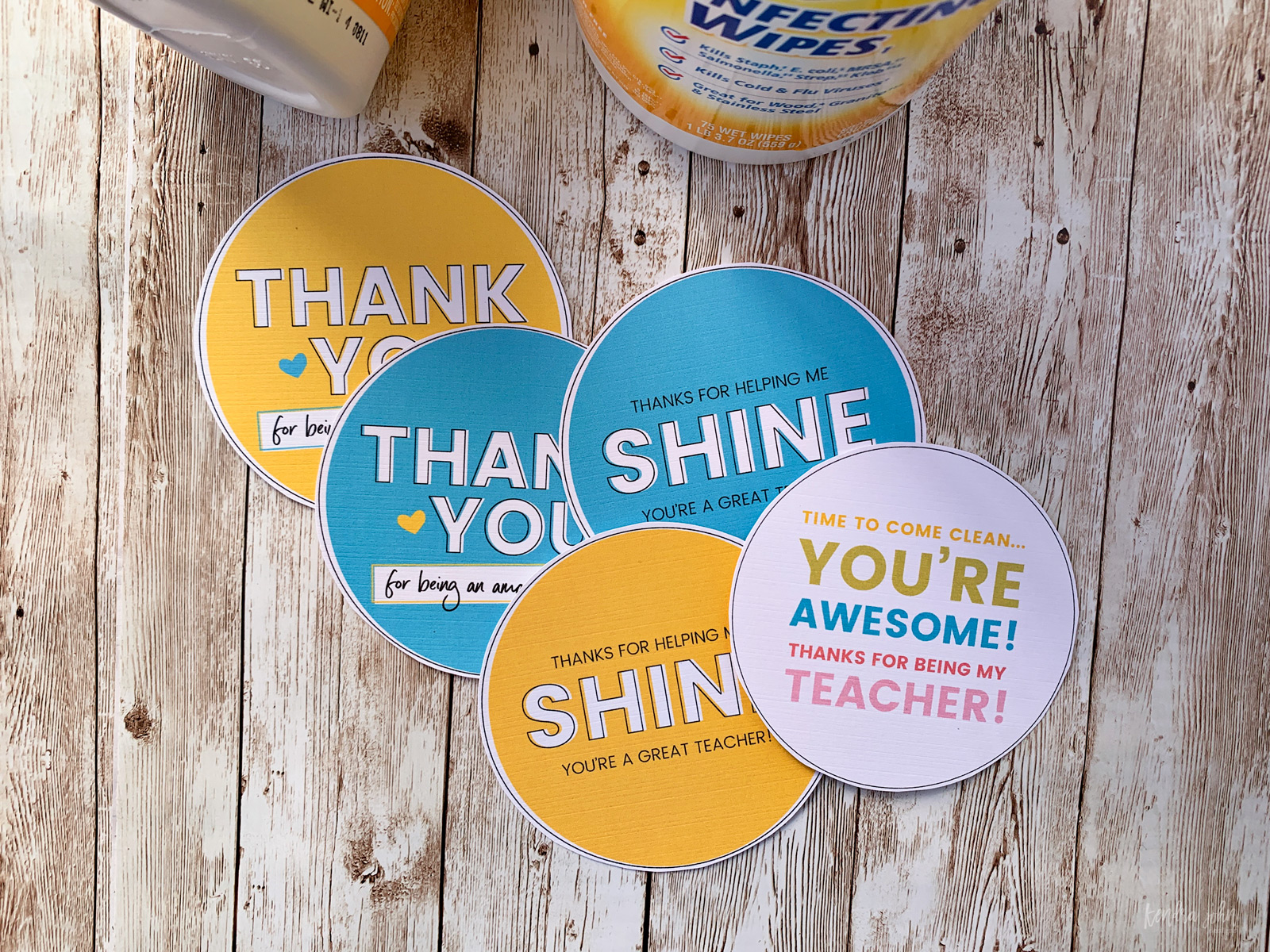 Teacher Appreciation Gift Tag for Sanitizing Wipes