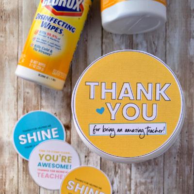 Sanitizing Wipes Teacher Appreciation Gift Idea